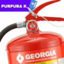 Purpura K